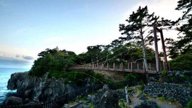 Photo of Đường bờ biển Jogasaki, một kiệt tác địa chất của bán đảo Izu