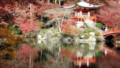Photo of Vẻ đẹp mùa thu tại di sản văn hóa thế giới: Chùa Daigoji tại Kyoto