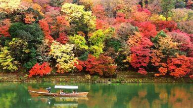 Photo of [Mùa lá đỏ 2019] Điểm ngắm lá đỏ tuyển chọn khu vực Kansai năm nay