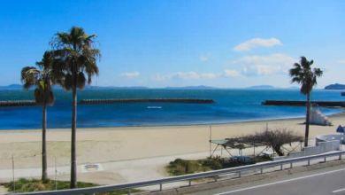 """Photo of """"Đảo bạch tuộc"""" Himakajima tỉnh Aichi – điểm du lịch đầy sức hút"""