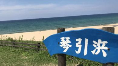 Photo of Bãi biển Kotohikihama xinh đẹp tại Kyoto