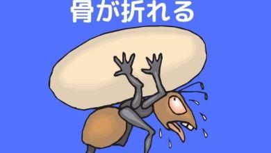 Photo of 骨が折れる – Học quán dụng ngữ để sử dụng tiếng Nhật tự nhiên hơn