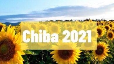 Photo of 3 cánh đồng hoa hướng dương tuyệt đẹp ở Chiba (hè 2021)