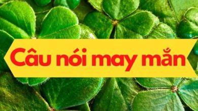 Photo of Học tiếng Nhật qua những câu nói giúp bạn may mắn hơn (kì 2)