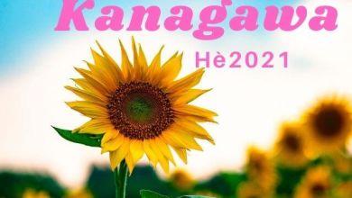 Photo of 2 cánh đồng hoa hướng dương đẹp ở Kanagawa (hè 2021)