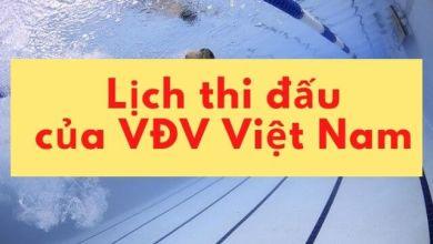 Photo of Cập nhật lịch thi đấu chính thức của đoàn vận động viên Việt Nam ở Thế vận hội 2020