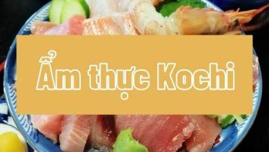 Photo of 4 món ăn ẩm thực vùng miền của tỉnh Kochi