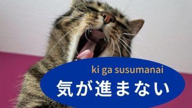 Photo of Học tiếng Nhật giao tiếp: Cách dùng 気が進まない