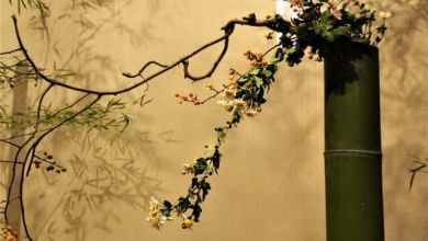Photo of Nghệ thuật cắm hoa Nhật Bản Ikebana – Kado