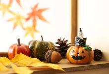 Photo of Tô điểm cho nhà bạn mùa Halloween 2021 cùng các sản phẩm từ Daiso