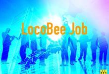 Photo of [LocoBee Job] Kĩ sư developer và tester tại Tokyo (LBJ2007007)
