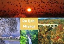 Photo of [Tohoku] Đặc trưng của tỉnh Miyagi và 10 điểm du lịch tiêu biểu