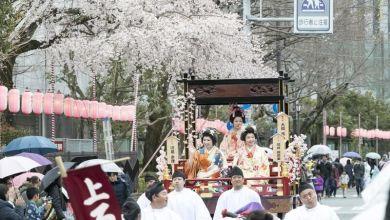 Photo of Trải nghiệm lịch sử văn hoá Nhật Bản tại lễ hội Shizuoka lần thứ 62