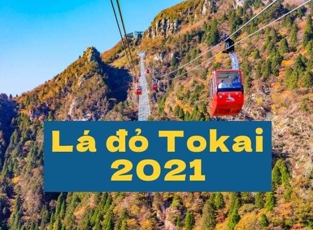 Photo of Top 10 điểm ngắm lá đỏ tuyển chọn khu vực Tokai năm 2021