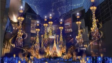 Photo of 5 Recommended Christmas Spots in Tokyo