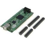 מודול פיתוח - MORPH-IC-II , CYCLON II , FPGA