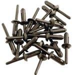 חבילת ניטים מפלסטיק - LASER TOOLS - 6.6MM X 17.2MM