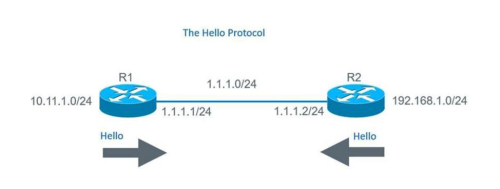 OSPF uses hello protocol to discover neighbors