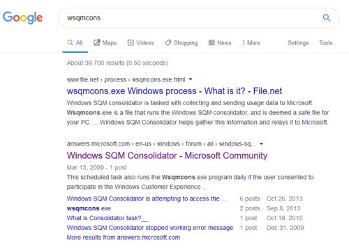 """Google search results of wsqmcons.exe"""""""