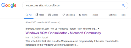 """Figure 12: The search query for """"Windows SQM Consolidator"""""""