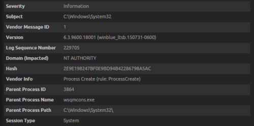 The parent process is wsqmcons.exe in the System32 directory