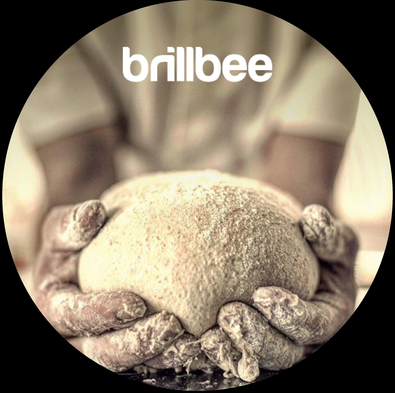 Onlinekurs Brillbee