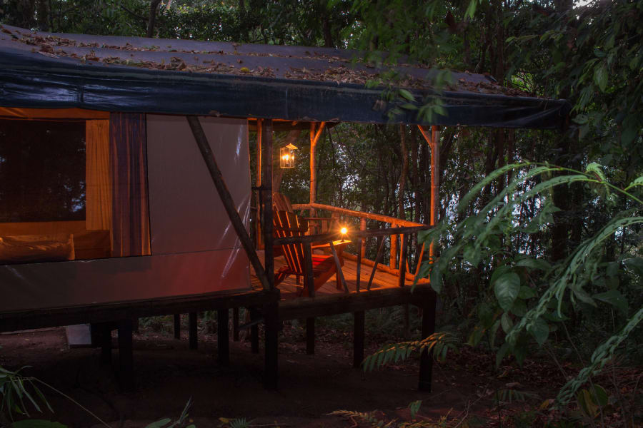 La Leona Eco Lodge Oceanfront Tent Cabins at Corcovado Carate Costa Rica null
