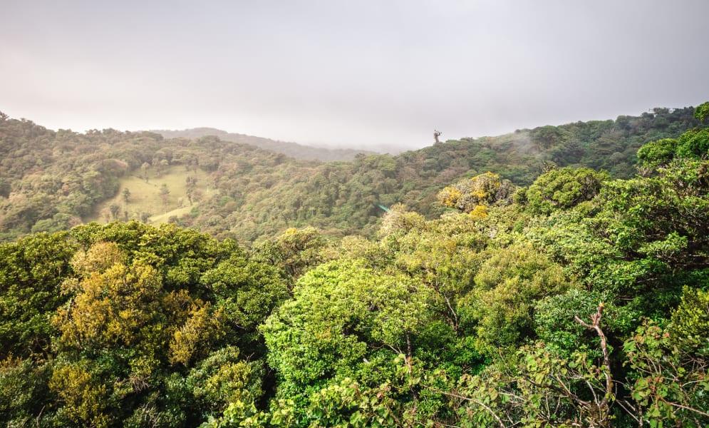 Sky Adventures Sky Tram Canopy Adventure  Monteverde Costa Rica null