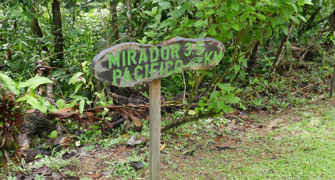 TRC Viajes Explore Hanging Bridge and Waterfalls of Los Campesinos Quebrada Arroyo Costa Rica undefined