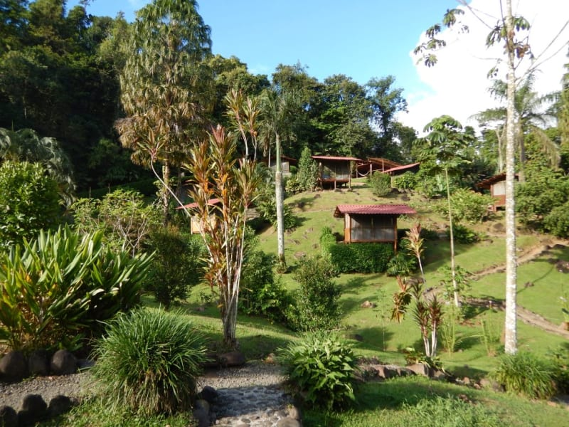 Pacuare River Lodge White Water Rafting and Cabin Stay on the Pacuare  Turrialba Costa Rica undefined