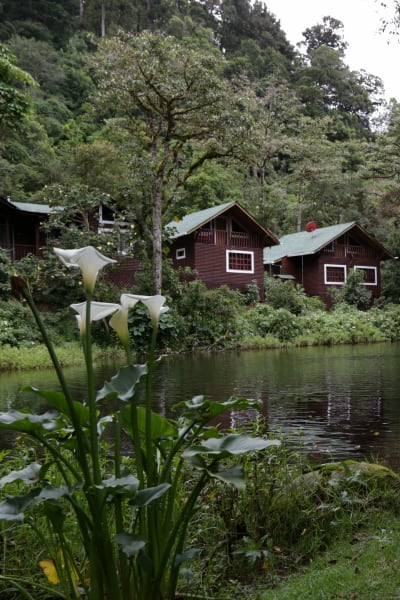 Sueños del Bosque Lodge Lakeside Cabins near Quetzales National Park San Gerardo de Dota Costa Rica undefined