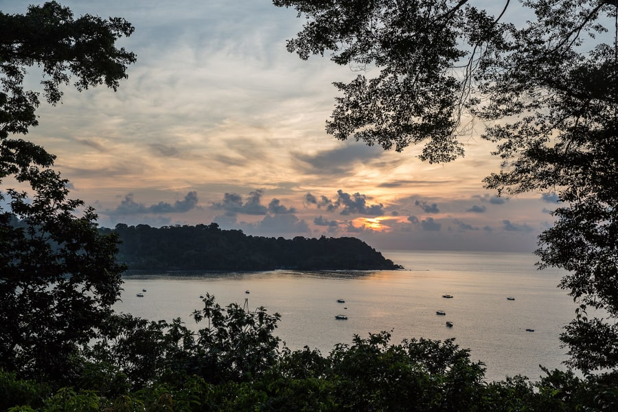 Lokal Adventures Jungle Yoga Adventure Los Planes Costa Rica Drake Bay