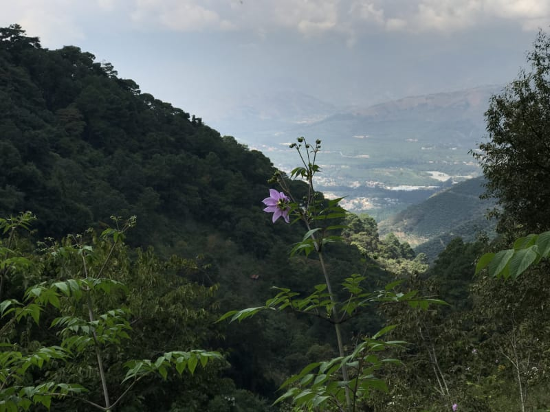 Lokal Adventures Immersive Guatemalan Culture and Nature Adventure Antigua to Peten Guatemala Hiking up to the natural spring in San Cristobal el Alto