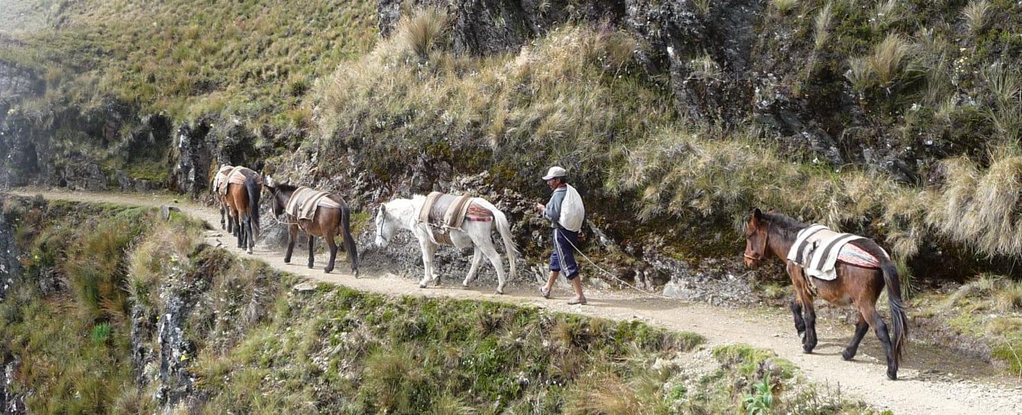 La Paz on Foot Tuni Condoriri Trek La Paz Bolivia undefined
