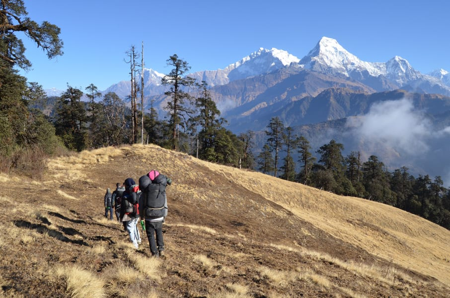 Royal Mountain Travel Annapurna Community Ecolodge Trek Pokhara Nepal undefined