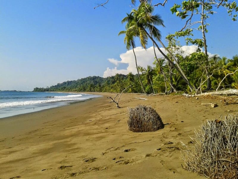 Bella Vista Drake Bay Costa Rica undefined