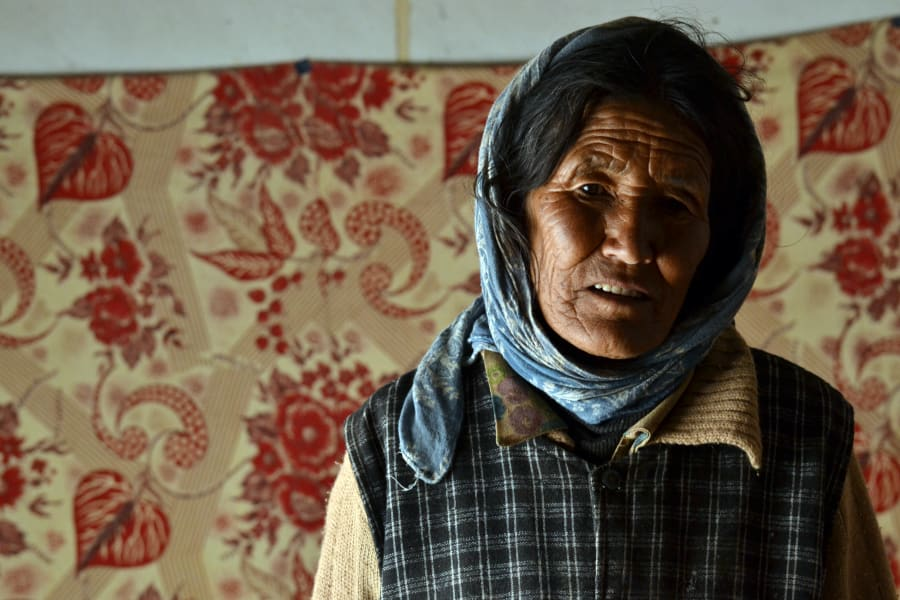 Mountain Homestays Changpa Nomadic Life Experience Leh  India undefined