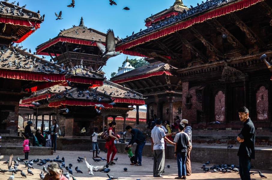 Royal Mountain Travel People and Culture of Nepal Kathmandu Nepal Pigeons in Durbar Square