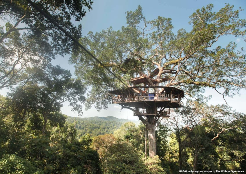 The Gibbon Experience Huay Xai Laos null