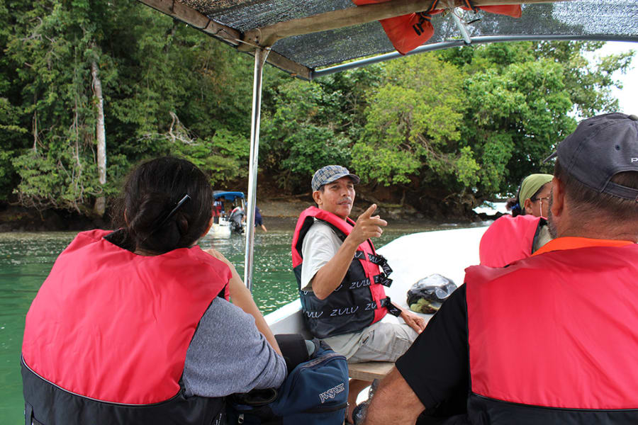 Osa Rural Tours Dolphin and Whale Spotting on Golfo Dulce Rincon Costa Rica