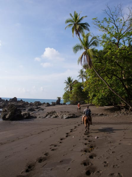 Lokal Adventures Epic Osa Rainforest Adventure Osa Peninsula Costa Rica Horseback is the best way to explore this beautiful stretch of coastline