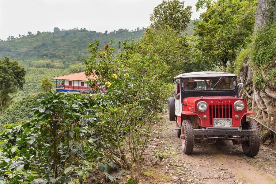 ZAIA Travel Classic Colombia: From Bogota to Cartagena Bogota Colombia Coffee Region