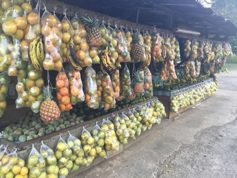 Countrystyle Community Experience Jamaican Taste Experience St. Elizabeth Jamaica Fresh fruit market in Porus village