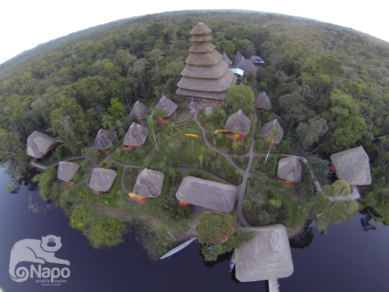 Napo Wildlife Center Ecolodge Yasunin National Park Ecuador undefined