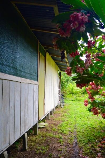 Rancho Quemado Development Association Rancho Verde Bed and Breakfast Rancho Quemado Costa Rica null