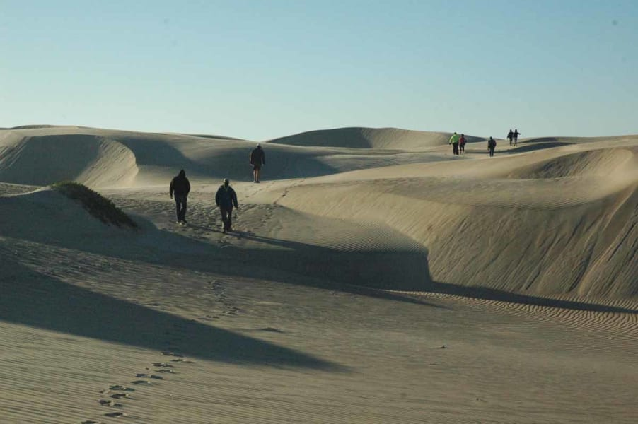 RED Travel Mexico Gray Whale and Sea Turtle Research Camp  La Paz Mexico Sand dunes in Baja