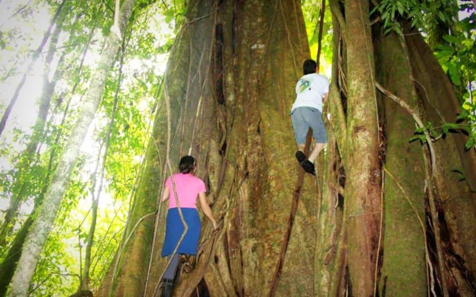 Matagalpa Tours A Paradise in the Mountains of Northern Nicaragua Matagalpa Nicaragua Natural Reserve Peñas Blancas Massif