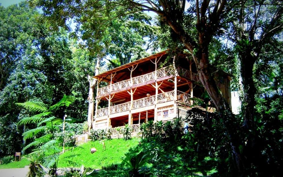 Matagalpa Tours La Canavalia Farm, La Sombra Ecolodge and Peñas Blancas Matagalpa Nicaragua La Sombra Ecolodge
