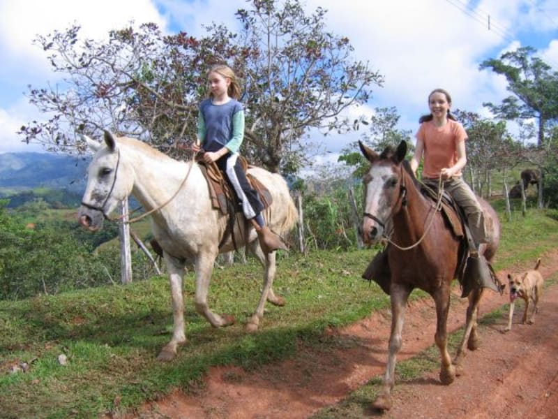 Rancho Mastatal  Eco-Lodge Stay with Rancho Mastatal Mastatal Costa Rica undefined