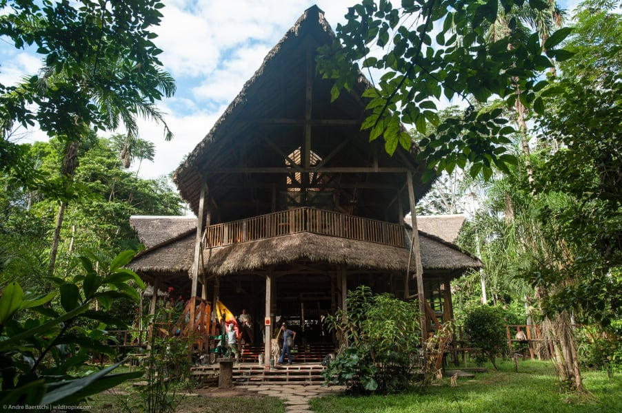 Rainforest Expeditions Refugios Amazonas Ecolodge Puerto Maldonado Peru Welcome to Refugios Amazonas